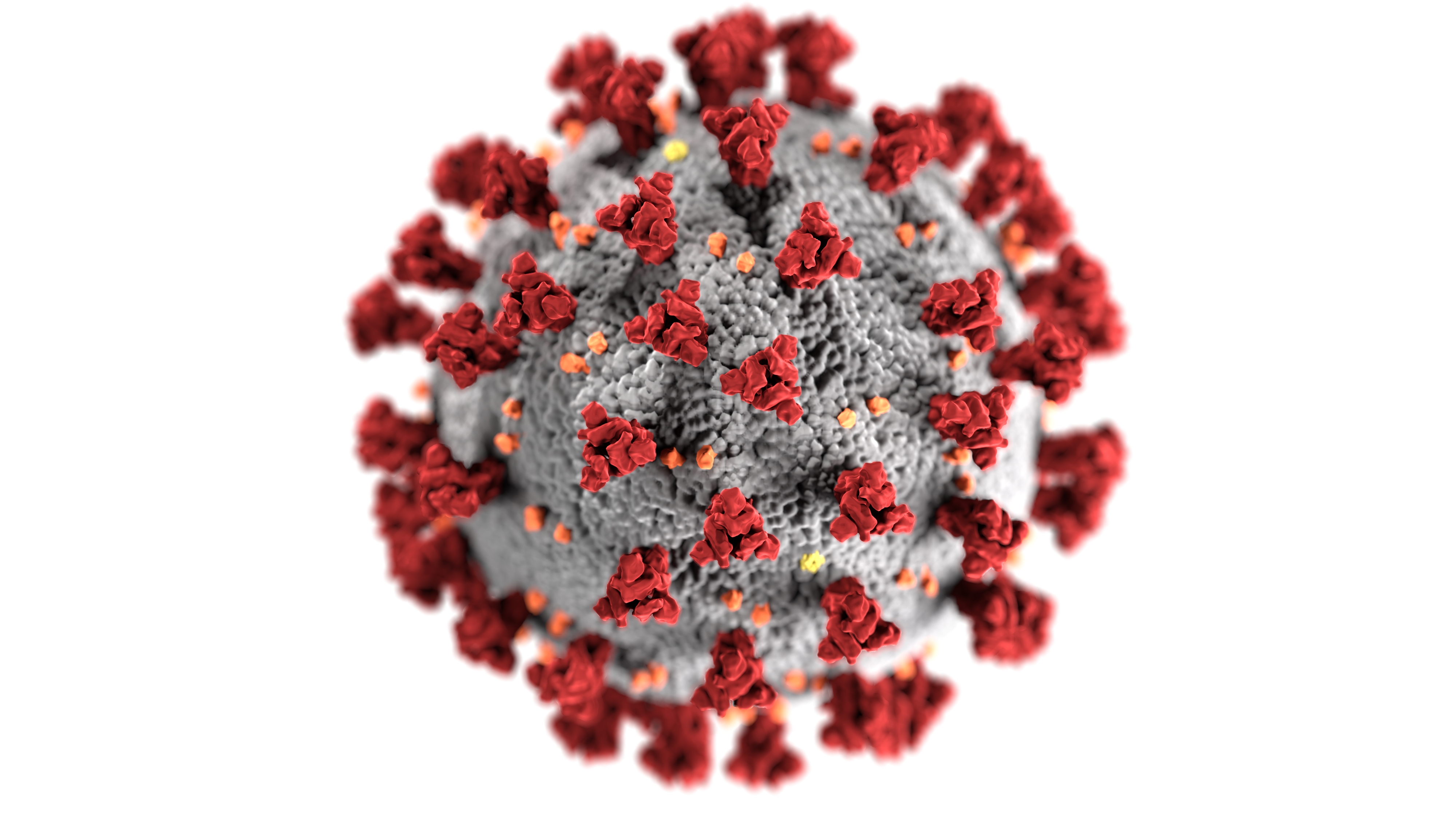 COVID-19 Outbreak Update